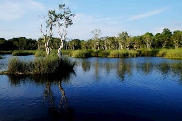 สวนพฤกษศาสตร์ระยอง-ที่พักระยองติดทะเลมีสระว่ายน้ำ-iTravel