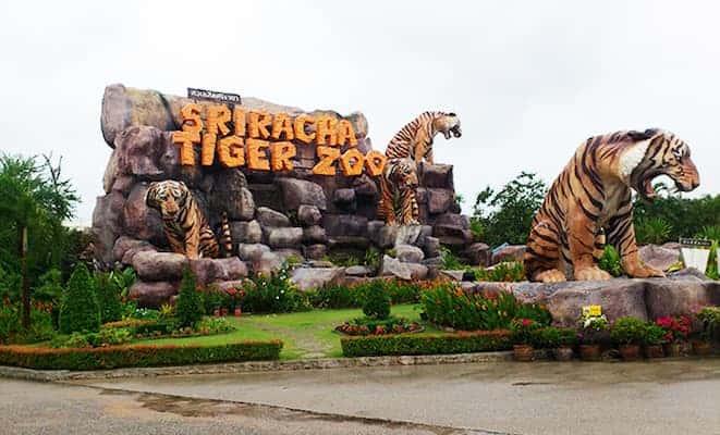 สวนเสือศรีราชา-ที่พักชลบุรีมีสระว่ายน้ำส่วนตัว-itravel