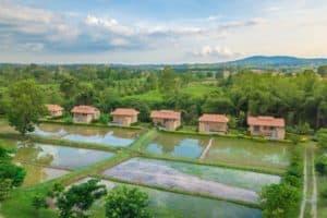 Organic Coolliving Farmhouse-ที่พักวังน้ำเขียวมีสระว่ายน้ำส่วนตัว-itravel
